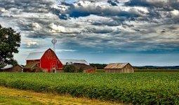 Farm Insurance in St Peter, MN